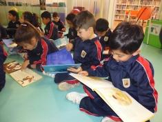 Visita a la biblioteca (4)